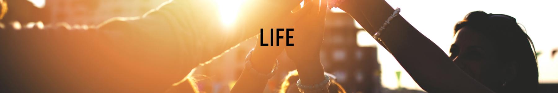 Pc life
